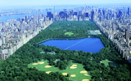 The Central Park Conservancy Institute for Urban Parks Announces the 2021 Partnerships Lab