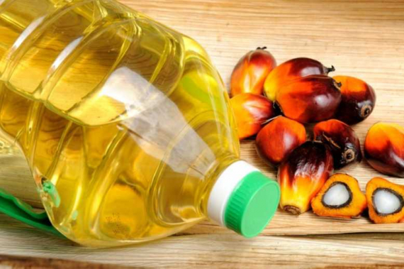 Marking significant progress, Cargill releases sustainable palm oil report
