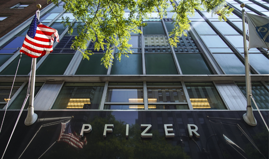 Pfizer talked about income